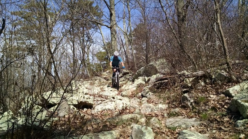 Another in the relentless series of rock gardens riders face on the County Line Trail.