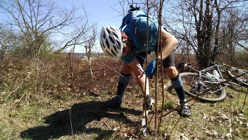 Maintenance can be tough in the backcountry, but Virginia's riders band together for a statewide trail work day on the Virginia Mountain Bike Trail in early April each year