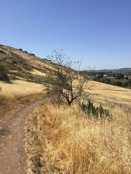 Pretty view on the Santa Rosa Trail