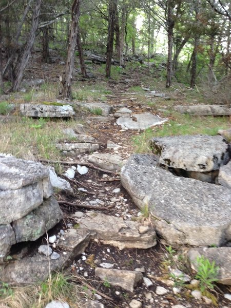 One of the many rock sections on Jack's Branch loop!