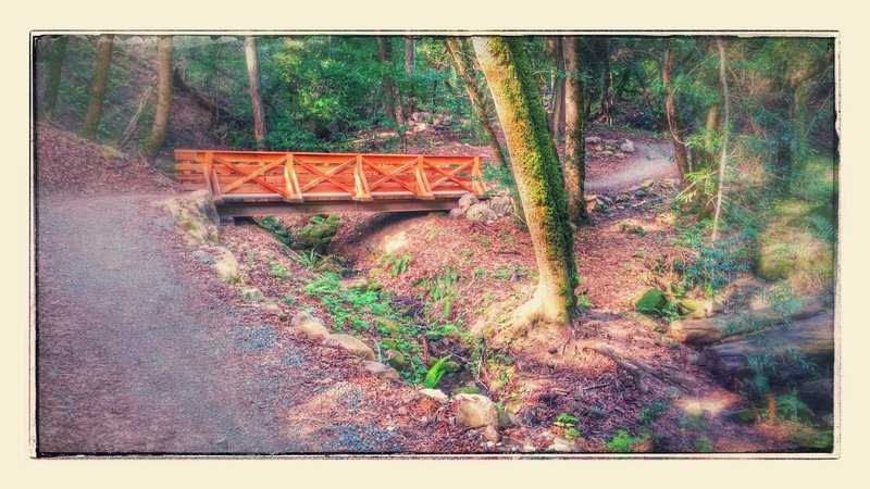 Nice craftsmanship on the bridges at the base of the John Nicholas Trail.
