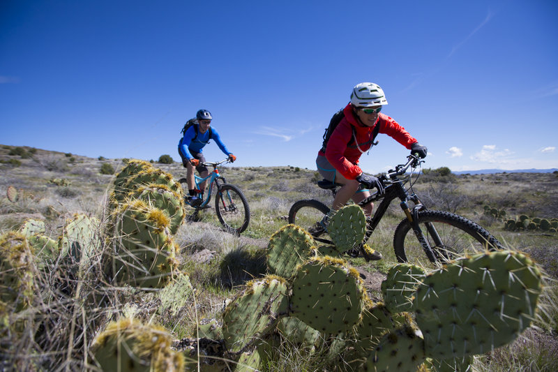 The Big Bug segment of the Black Canyon Trail (BCT) has plenty of fun and flowy sections.