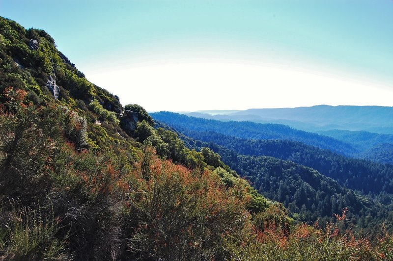 Some great views from the Skyline Trail!