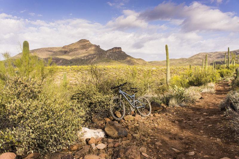 Enjoying the Spur Cross trail!
