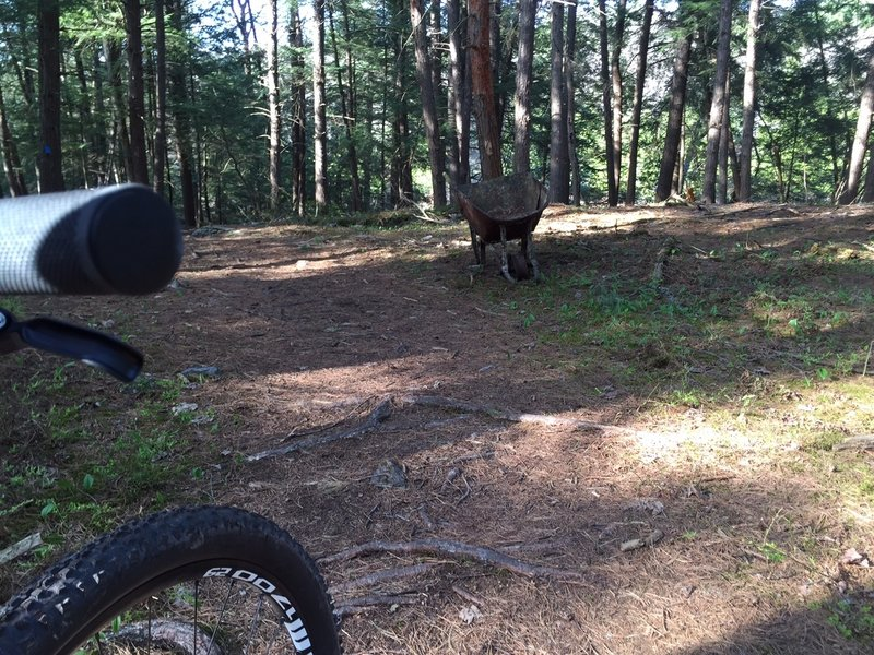 Almonte Riverside Trail ( Anyone need a wheelbarrow? )