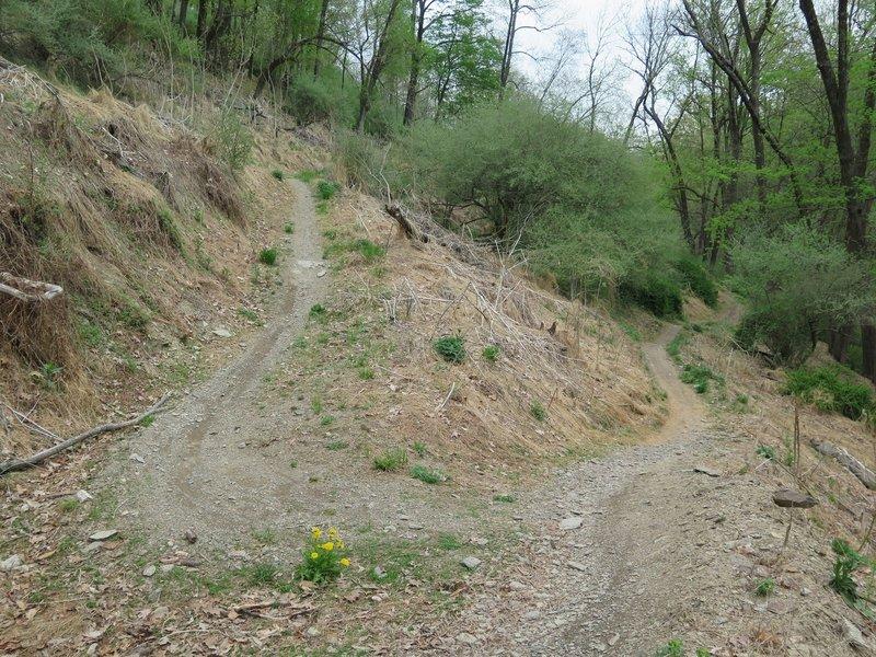 Switchback along the Broken Arrow Trail