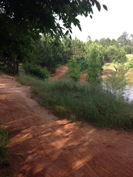 View of pump track around pond