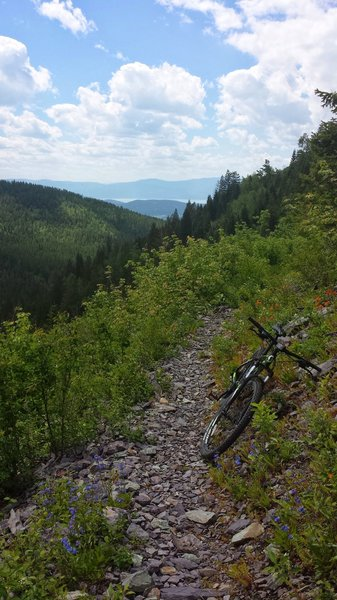 Echo Broken Leg Trail #544 Mountain Bike Trail, Bigfork, Montana on