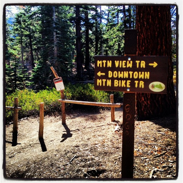 Earthquake Fault Junction - continue going up into Mammoth Mountain Bike Park or turn onto Downtown Trail or Mountain View Trail here.
