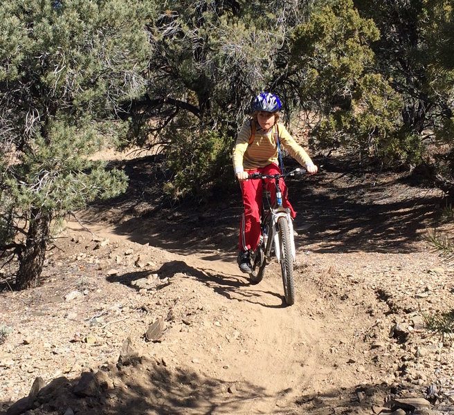 The Pinyon Trail is great for all ages.