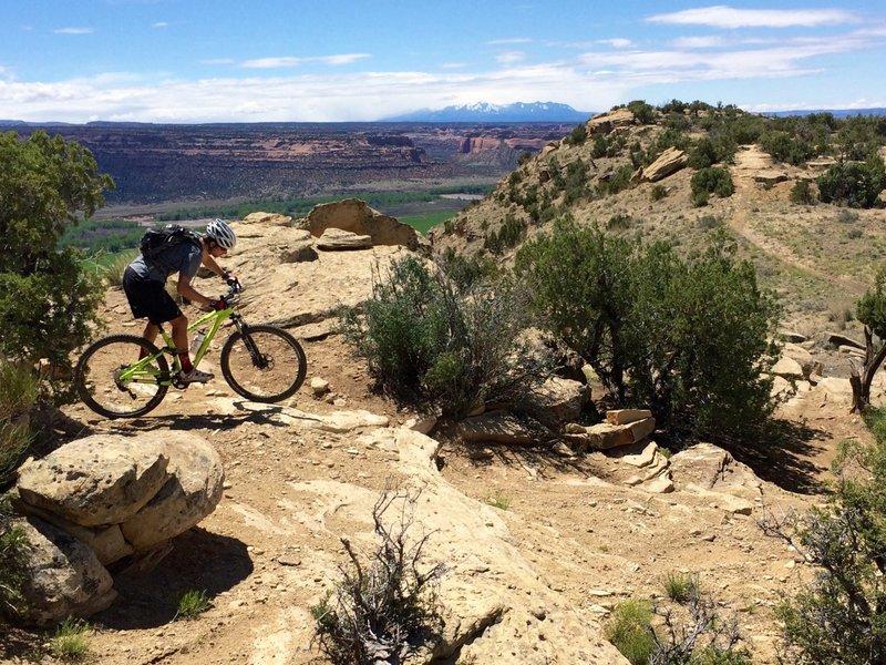 Views of the La Sal range near Moab