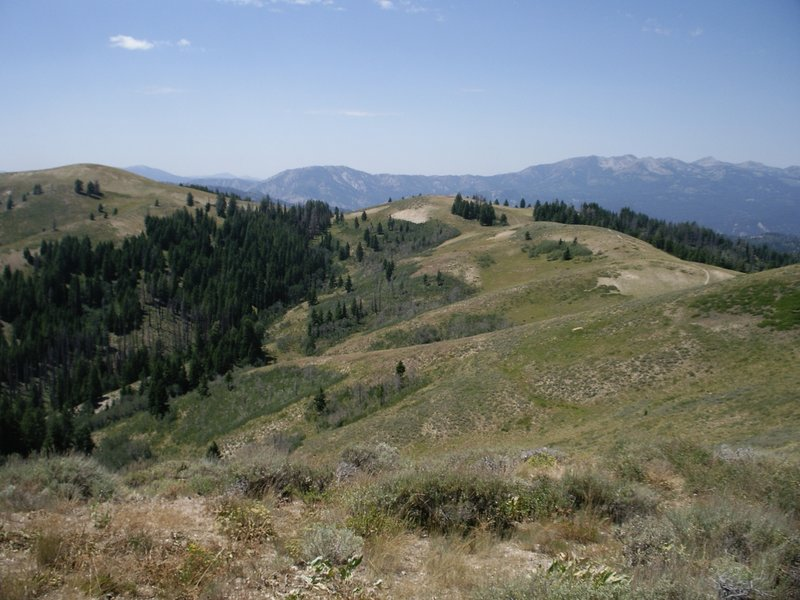 Looking down into the North Fork