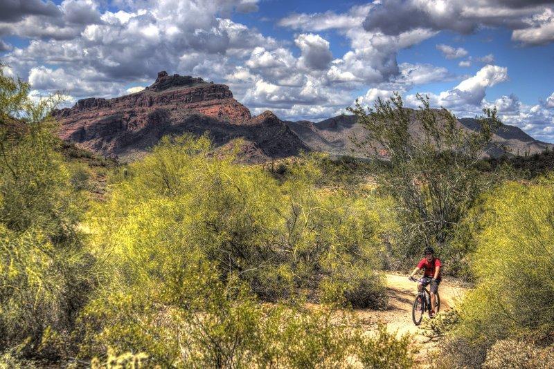 Riding Hawes Pig Trail