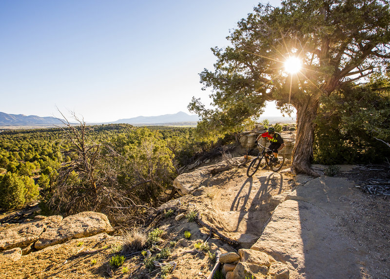 Catch some great views and a little bit of exposure at Abajo Overlook.