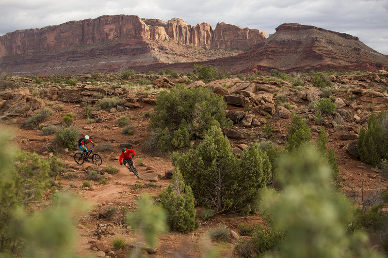 Lazy, part of the Moab Brand trails, has plenty of good fun and great views