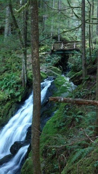 Bridge over Horseshoe Creek falls at mile 4.9