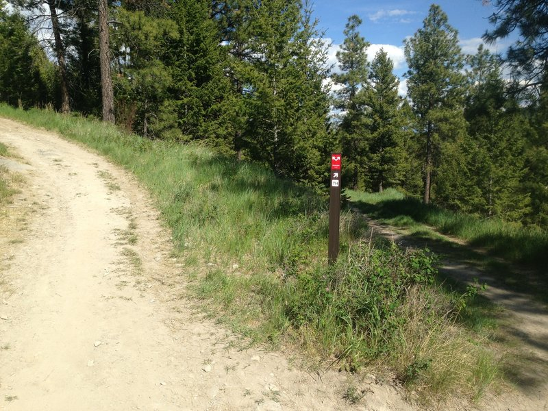 Intersection of the Overlook Trail and the Overlook doubletrack trail. Uphill = Notch = Fun
