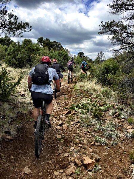 Trail #332