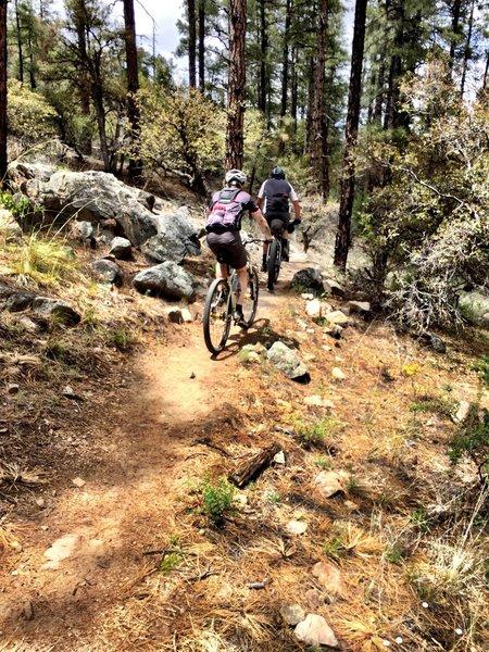 Rocky outcrops along Trail #332