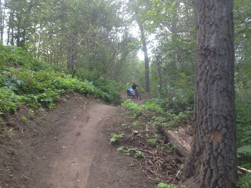 The flow trail at Palmer Bike Park is easy enough for parents with trailers, but challenging enough that skilled riders can rip the trail with no brakes, air the rolls, and lay it over in the berms.