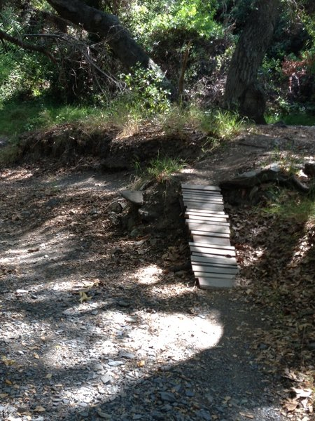 Here are some fun obstacles along the in out singletrack along the main trail.