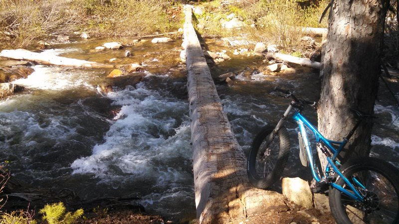 Natural log bridge crossing Goose Creek. Don't slip off this one, you may never be found again.