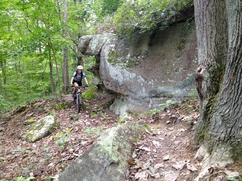 Enjoy riding past some big, beautiful rocks near the end of Hollow Point Trail.
