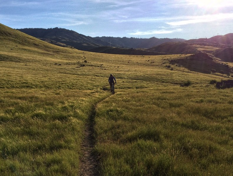 After crossing an open field littered with lava rocks and cow poo, the trail's about to get really fast.