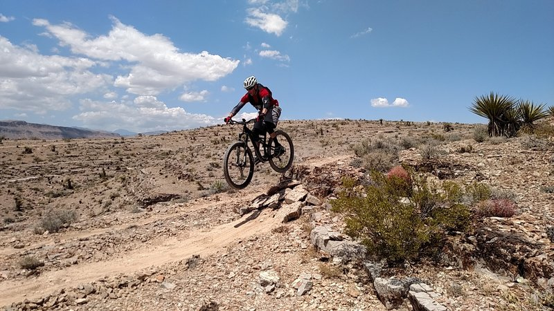 On one of the many drops on the Southwest Ridge Trail system.