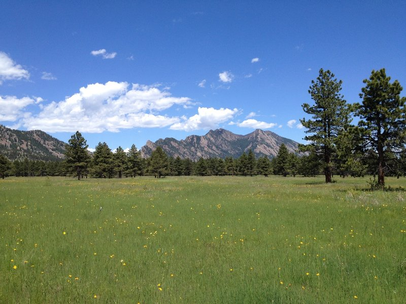 Man, I love Colorado!
