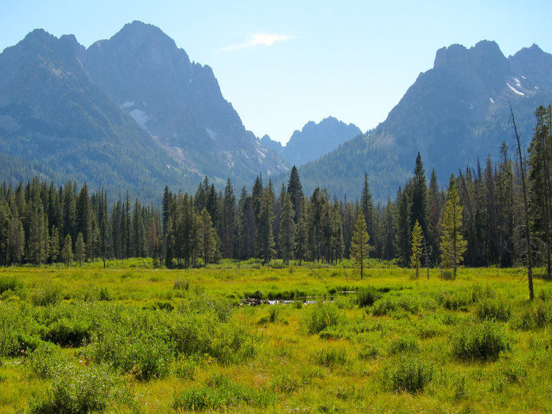View from Fishhook Creek Meadow