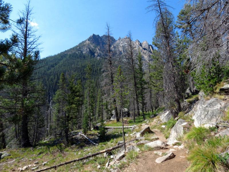 Trail to Lily Lake