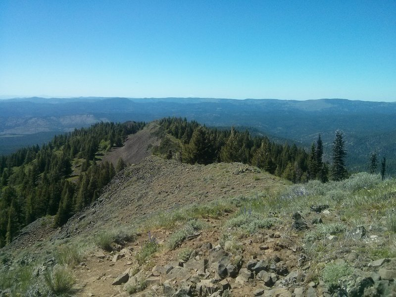 Ridge line at the top of Lookout Mountain.