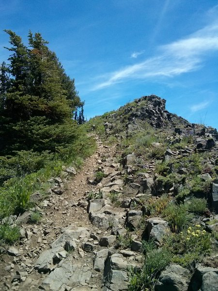 Rocky descent section on the Lower Lookout Mountain trail.