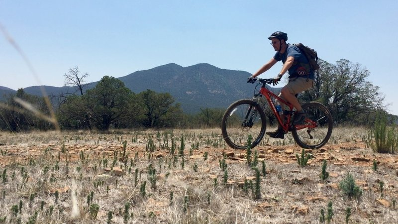 On the Continental Divide trail with Bear Mountain in the background.