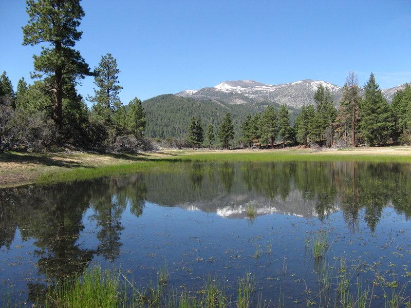 Dry Pond Loop