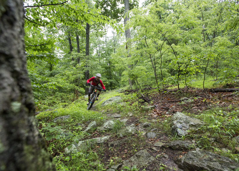 Cruising downhill on the intermediate trail at Emmitsburg.