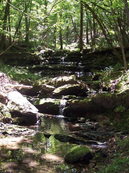 One of the Cascades along the trail to Hickory Nut