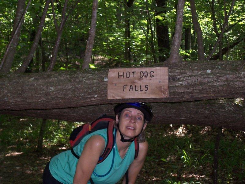 Hot Dog Falls