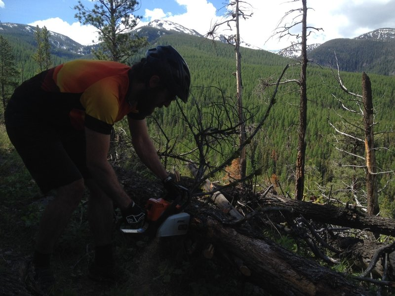 MTB Missoula cuts the trail out each year when the road opens. Lumber Biking!