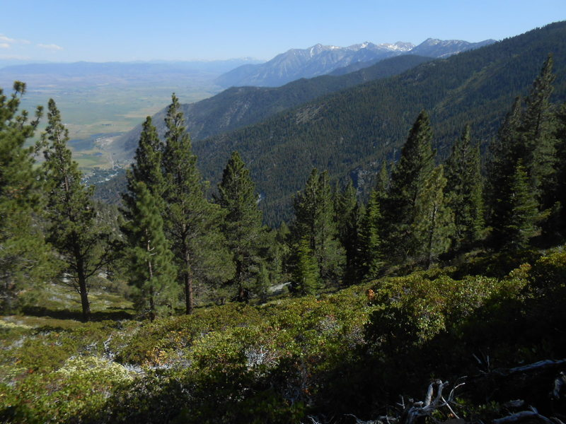Looking southeast over the Carson Valley from Sierra Canyon. Town of Genoa at bottom of Canyon, Jobs Peak and Jobs Sister in the distance.