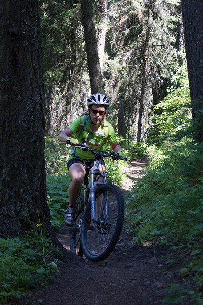 Riding the smooth portion of the trail in the dense, cool forest