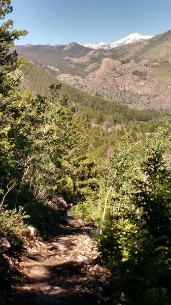 Wind River Peak in the background as you head down trail toward the Popo Agie river.
