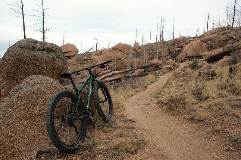 Shingle Mill Trail rocky section