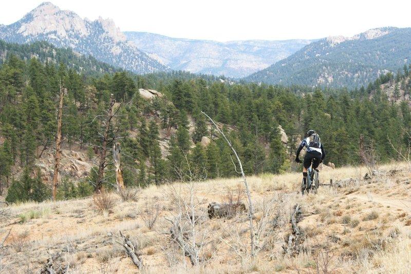 Rider descending Shingle Mill Trail