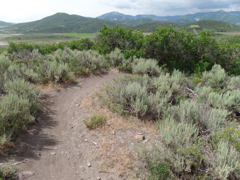 View of the surrounding area from a switchback on Somewhere Elks.