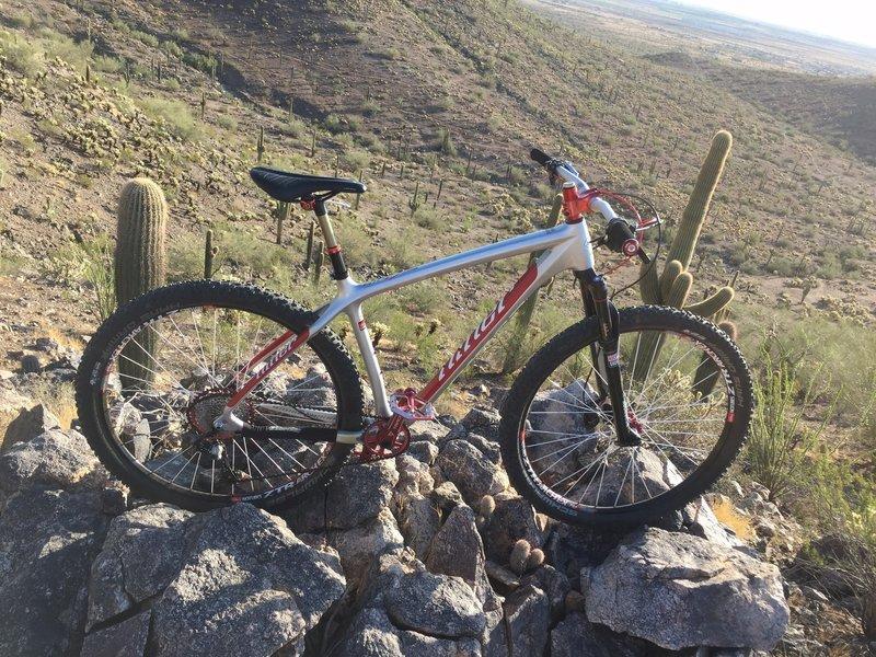 Top of Ridge Trail