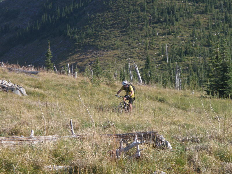 High country singletrack!