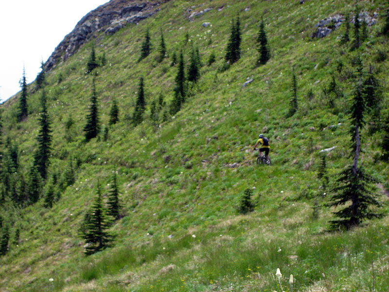 Crossing the east face of The Scout. Buckhorn Mine site is on the other side of the ridge at the head of Mill Creek.