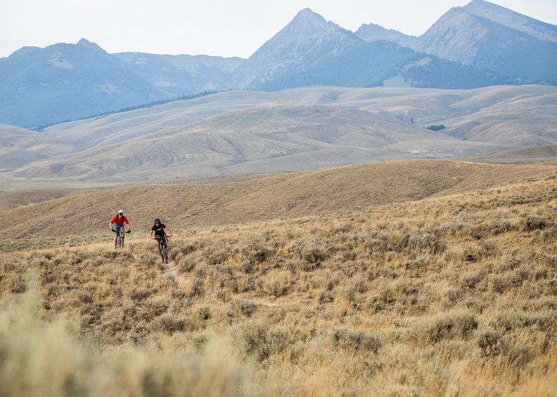 The Sheriff Cutoff trail with the Beaverhead Mountains in the background.